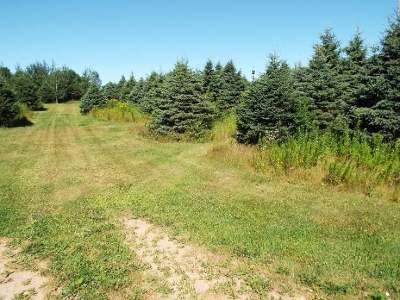 Antigo Residential Lots & Land For Sale: Lot #3 Mary St