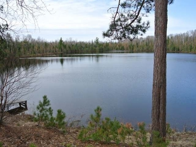 Three Lakes WI Residential Lots & Land Active O/C: $189,000