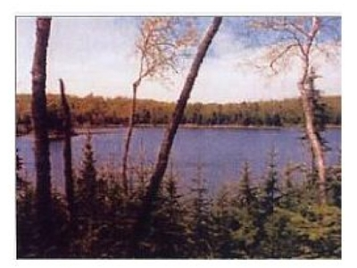 Residential Lots & Land For Sale: Lot 4 Ottawa Ln