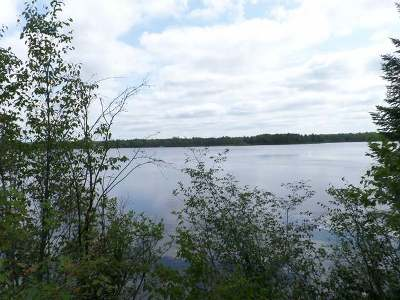 Minocqua WI Residential Lots & Land For Sale: $39,000