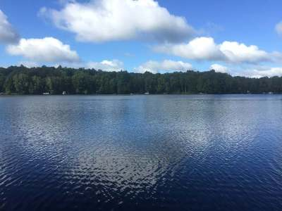 Gleason Residential Lots & Land For Sale: On Pickerel Lake Rd E