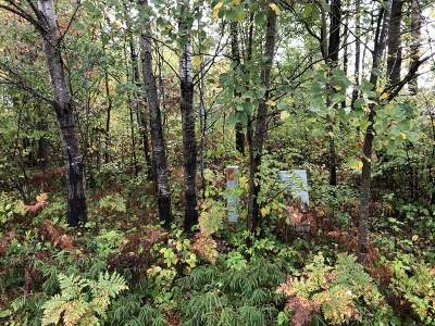 Tomahawk Residential Lots & Land For Sale: On Birchwood Ave E