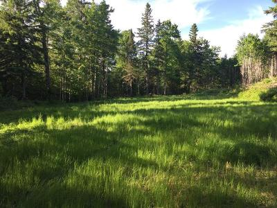 Antigo Residential Lots & Land For Sale: County Line Rd