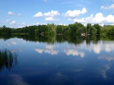 Oneida County, Lincoln County, Price County Residential Lots & Land For Sale: N6066 Gruening Ln
