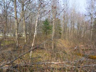 Minocqua WI Residential Lots & Land For Sale: $7,900