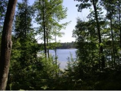 Residential Lots & Land For Sale: 4718 Currie Lake Rd