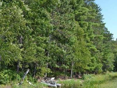 Residential Lots & Land For Sale: On Currie Lake Rd