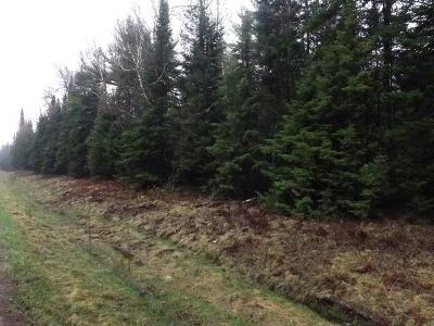 Eagle River WI Residential Lots & Land For Sale: $62,500
