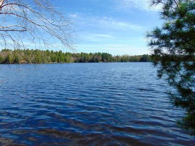 Oneida County, Lincoln County, Price County Residential Lots & Land For Sale: N10171 Lake Alice Rd
