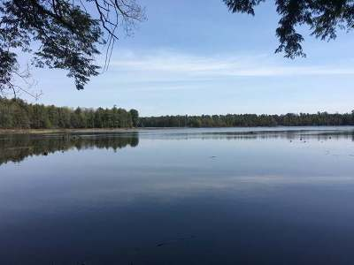 Three Lakes WI Residential Lots & Land For Sale: $94,900