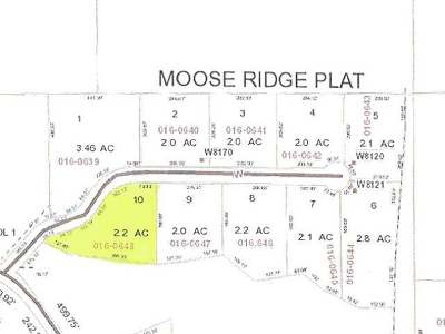 Residential Lots & Land For Sale: Lot 10 Moose Ridge Dr