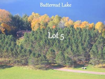 Butternut Residential Lots & Land For Sale: Lot 5 Lakeshore Ln