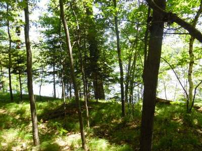 Arbor Vitae WI Residential Lots & Land Active O/C: $44,900