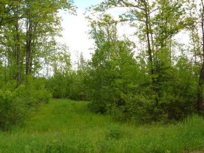 Merrill Residential Lots & Land For Sale: On Hagar City Rd