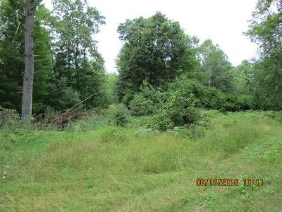 Minocqua WI Residential Lots & Land For Sale: $327,750
