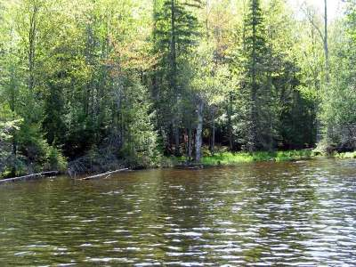 Residential Lots & Land For Sale: Near Gaylord Lake Rd #8
