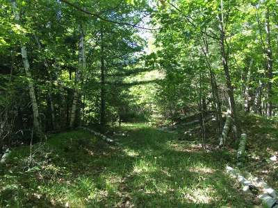 Pickerel Residential Lots & Land For Sale: On Arbutus Point Ln