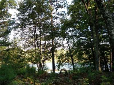 Lake Tomahawk WI Residential Lots & Land For Sale: $39,900