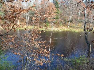 Residential Lots & Land For Sale: Lot 16 Deer Trail Rd