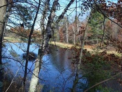 Residential Lots & Land For Sale: Lot 17 Deer Trail Rd