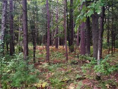 Oneida County, Lincoln County, Price County Residential Lots & Land For Sale: On Martin Ln