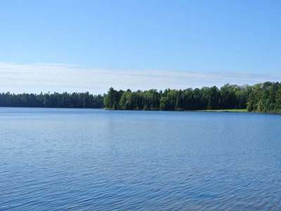 Three Lakes Residential Lots & Land For Sale: On Allyn Rd