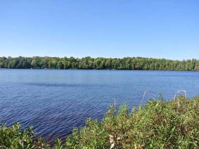 Three Lakes WI Residential Lots & Land For Sale: $179,000