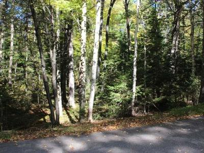 Residential Lots & Land For Sale: On Chippewa Tr