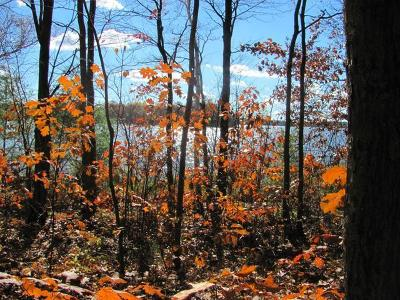 Lac Du Flambeau WI Residential Lots & Land For Sale: $154,900