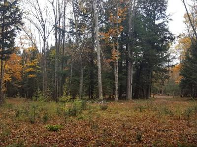 Residential Lots & Land For Sale: On Duck Lake Rd E #4.52 acr