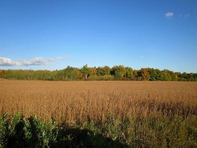 Gleason Residential Lots & Land For Sale: 20 Acres Hay Meadow Dr