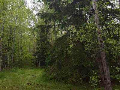 Gleason Residential Lots & Land For Sale: On Cth X