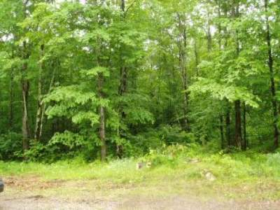 Residential Lots & Land For Sale: On Chick A Dee Tr