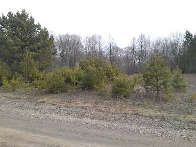 Residential Lots & Land For Sale: On Lot16 Thorn Apple Dr