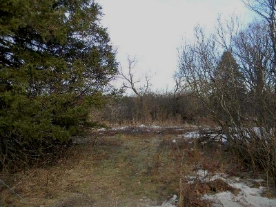 Residential Lots & Land For Sale: On Riordon St