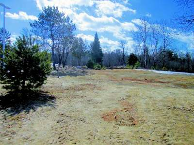 Rhinelander Residential Lots & Land For Sale: 1738 Stevens St