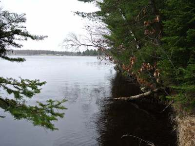 Three Lakes WI Residential Lots & Land For Sale: $249,500
