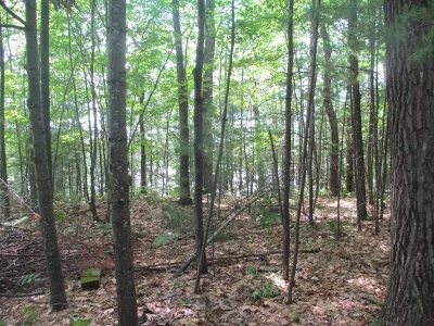 Elcho Residential Lots & Land For Sale: On Circle Dr #Lot