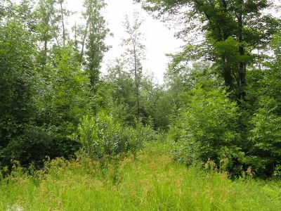 Crandon Residential Lots & Land For Sale: 10 Acres Keith Siding Rd
