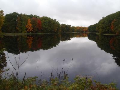Gleason Residential Lots & Land For Sale: On Turtle Lake Rd