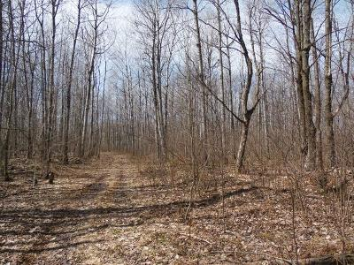 Oneida County, Lincoln County, Price County Residential Lots & Land For Sale: 40 Acres Hoffman Rd