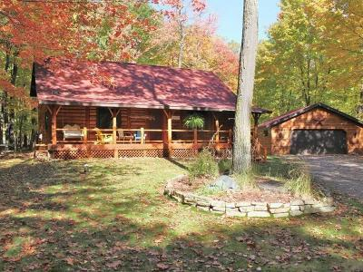 Minocqua Single Family Home For Sale: 9136 Davies Rd