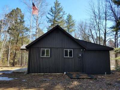 Lake Tomahawk Single Family Home For Sale: 7668 Jack Pine Forest Rd