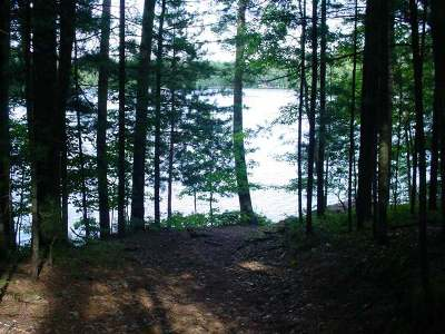 Residential Lots & Land For Sale: 4083 Bass Lake Loop