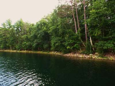 Rhinelander Residential Lots & Land For Sale: Lots 2&3 Lake Mildred Rd