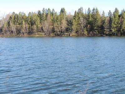 Pickerel Residential Lots & Land For Sale: On Big Twin Lake Ln