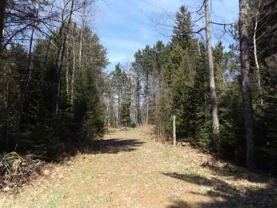 Residential Lots & Land For Sale: 766 Hwy 8