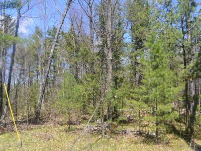 Minocqua WI Residential Lots & Land For Sale: $23,700