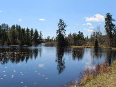 Oneida County, Lincoln County, Price County Residential Lots & Land For Sale: Lot 8 Killarney Bay Dr