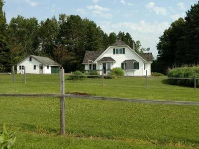 Price County Single Family Home For Sale: N8281 Fox Run Rd